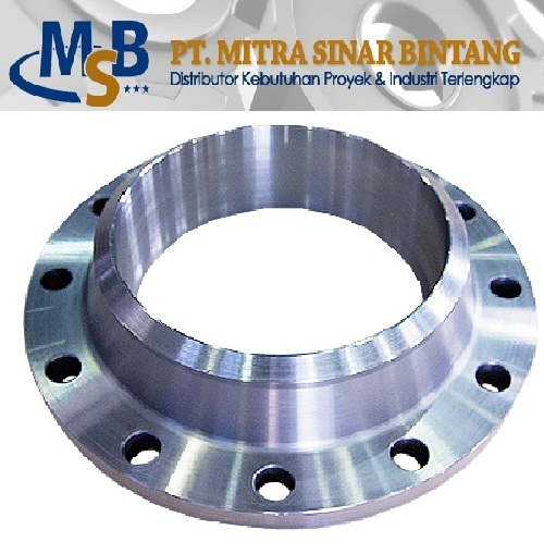 Flange WN Stainless Steel SS316L